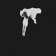 Kaleida_-_Tear_The_Roots