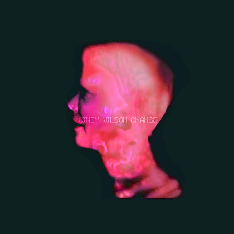 Brèves – Liam Gallagher, Field Music, Cindy Wilson ( B52's )