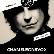 1454346_2018-05-28-chameleonsvox-au-supersonic-script-of-the-bridge-35-ans-paris