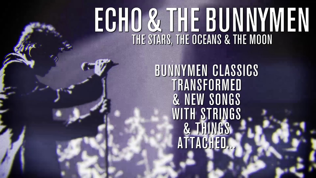 News – Echo et The Bunnymen and the Champions League