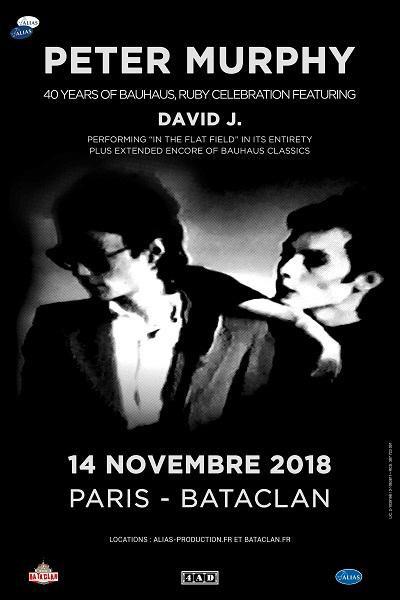 Bientot En Concert Chez Nous – Peter Murphy et David J, Mercury Rev, Rat Boy
