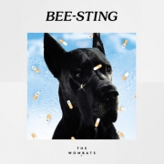 The-Wombats-Bee-Sting