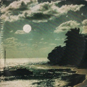 echo and the bunnymen the killing moon transformed