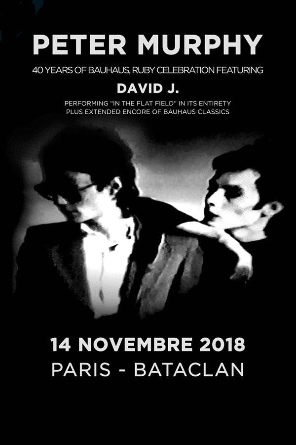 Bientôt En Concert Chez Nous – Peter Murphy, Piroshka, The Young Gods