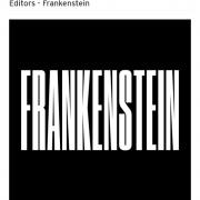 Screenshot_2019-06-14 Editors - Frankenstein