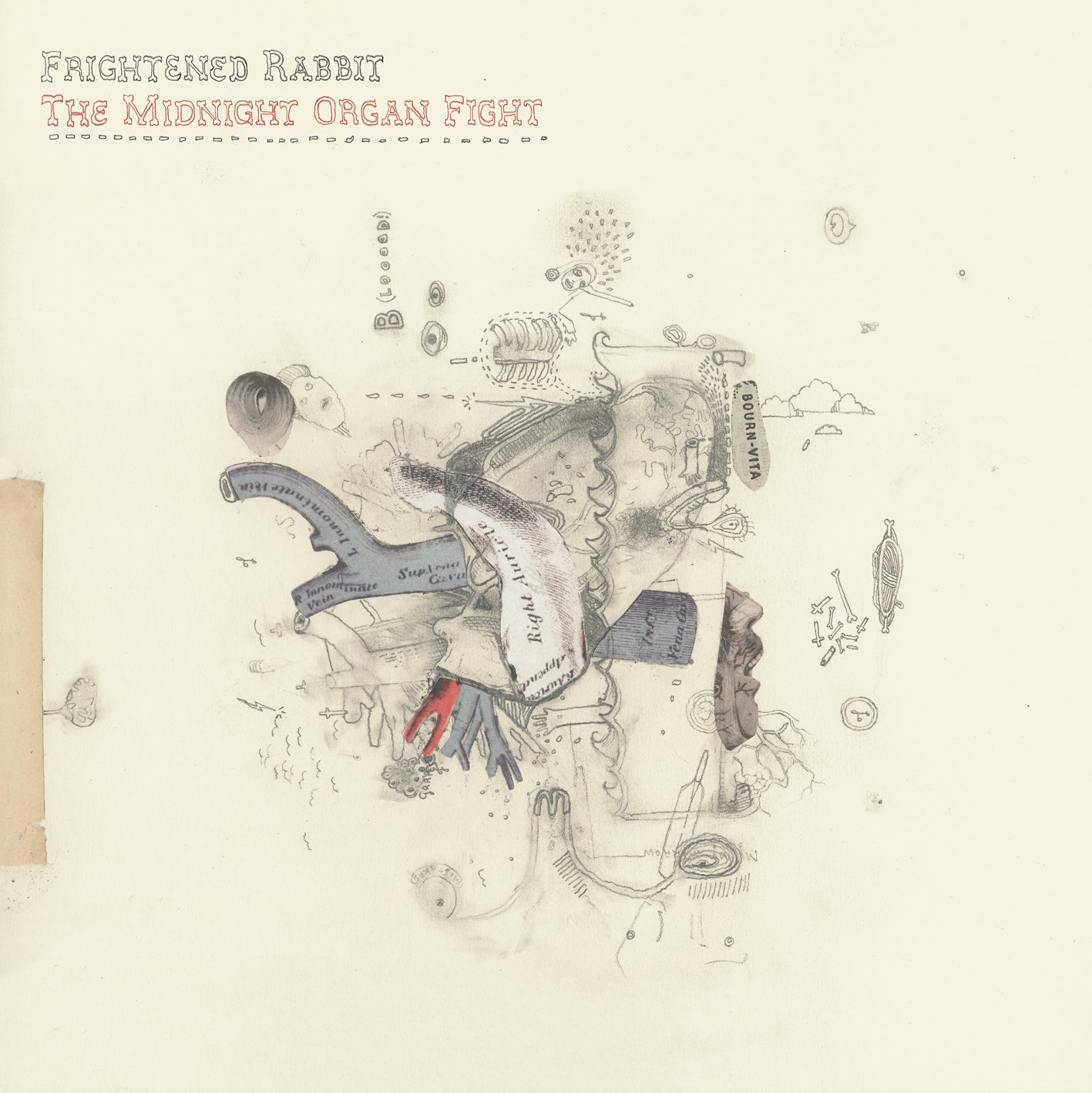 News – Frightened Rabbit – Tiny Changes : A Celebration of Frightened Rabbit's 'The Midnight Organ Fight