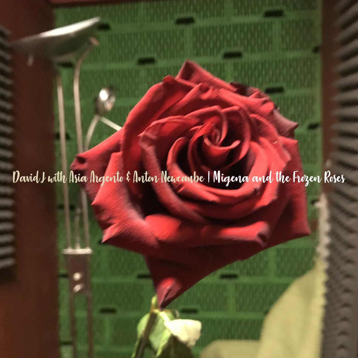 News – David J – Migena And The Frozen Roses