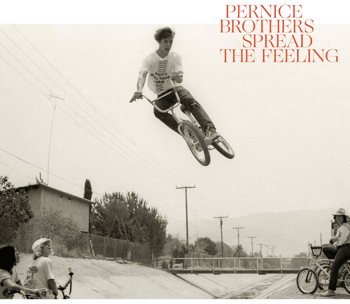 News – Pernice Brothers – Spread The Feeling