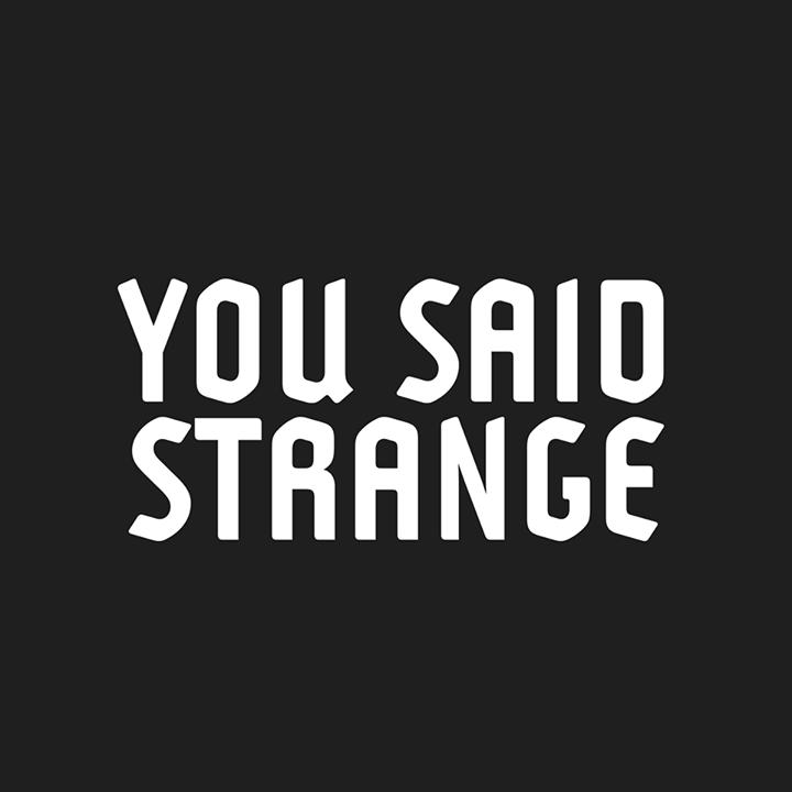 Focus Découverte – You Said Strange