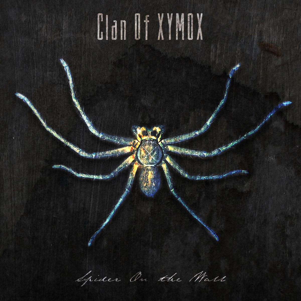 News – Clan of Xymox – Spider On The Wall