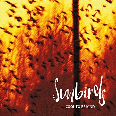 News – Sunbirds – Cool To Be Kind