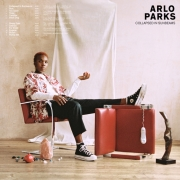 arlo_parks_collapsed_sunbeams
