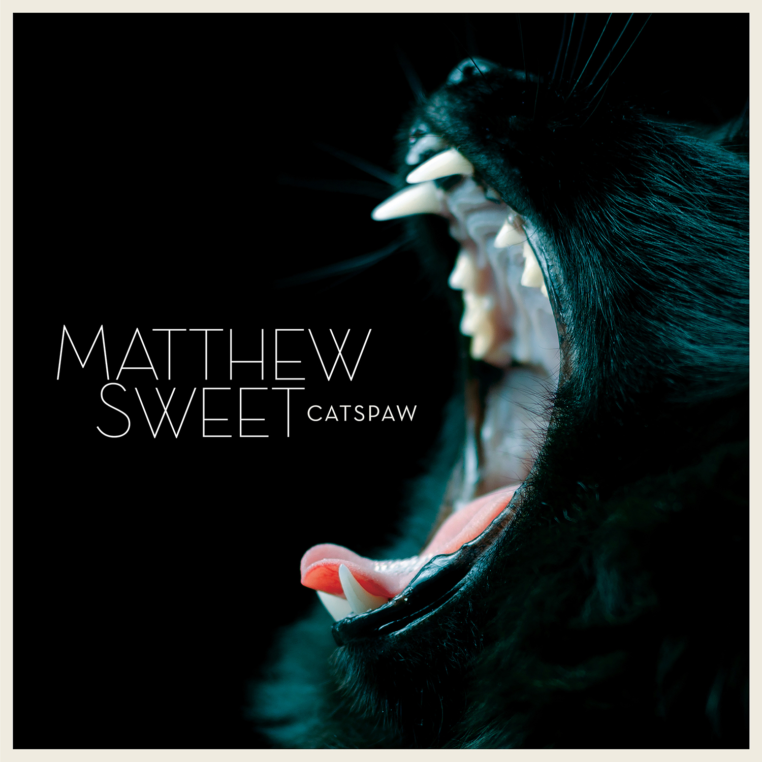 Brèves – Andy Bell, Matthew Sweet, Miami Horror