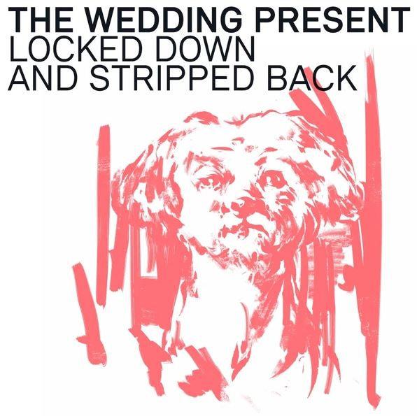 News – The Wedding Present – Locked Down And Stripped Back