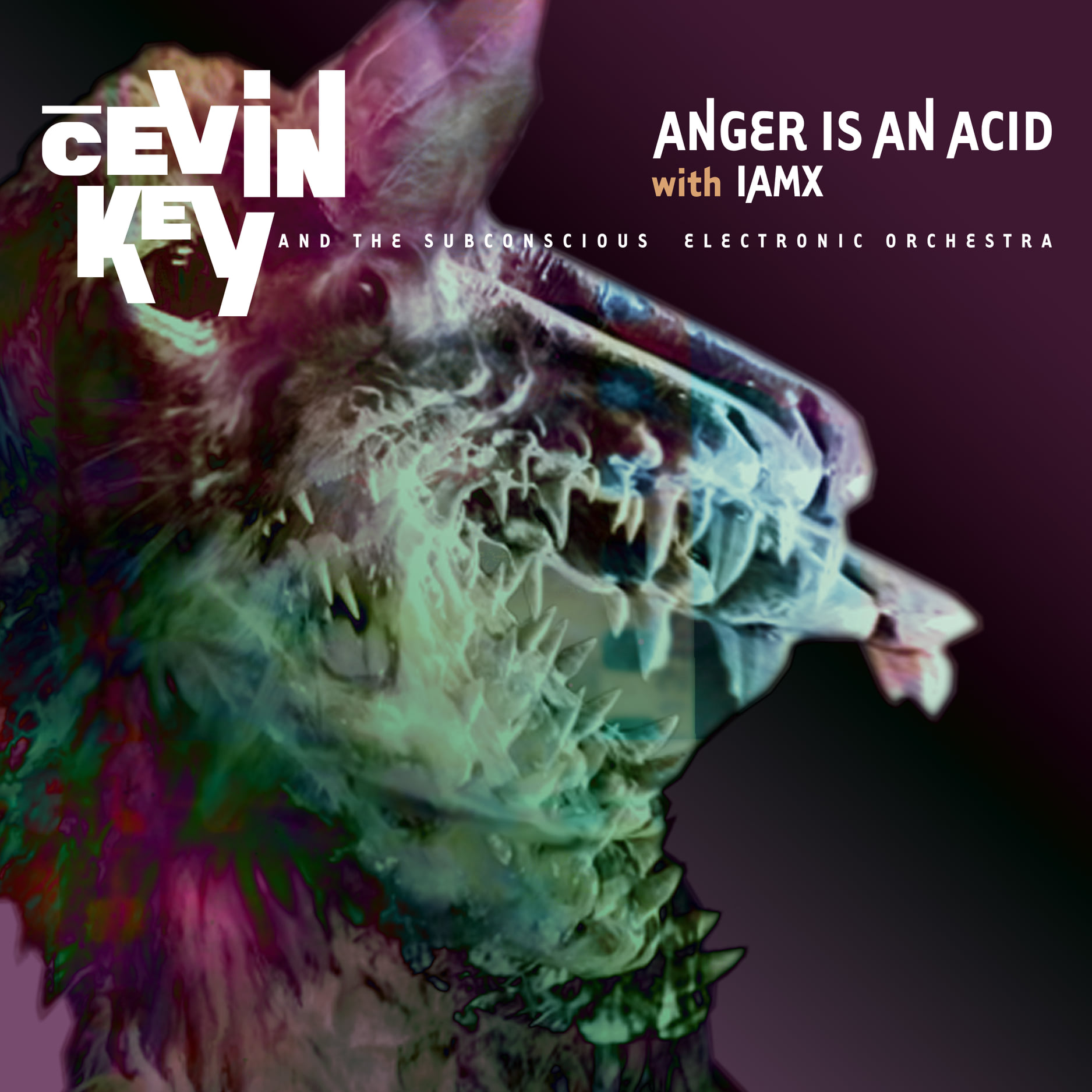 News – cEvin Key – Anger is an Acid (with IAMX)