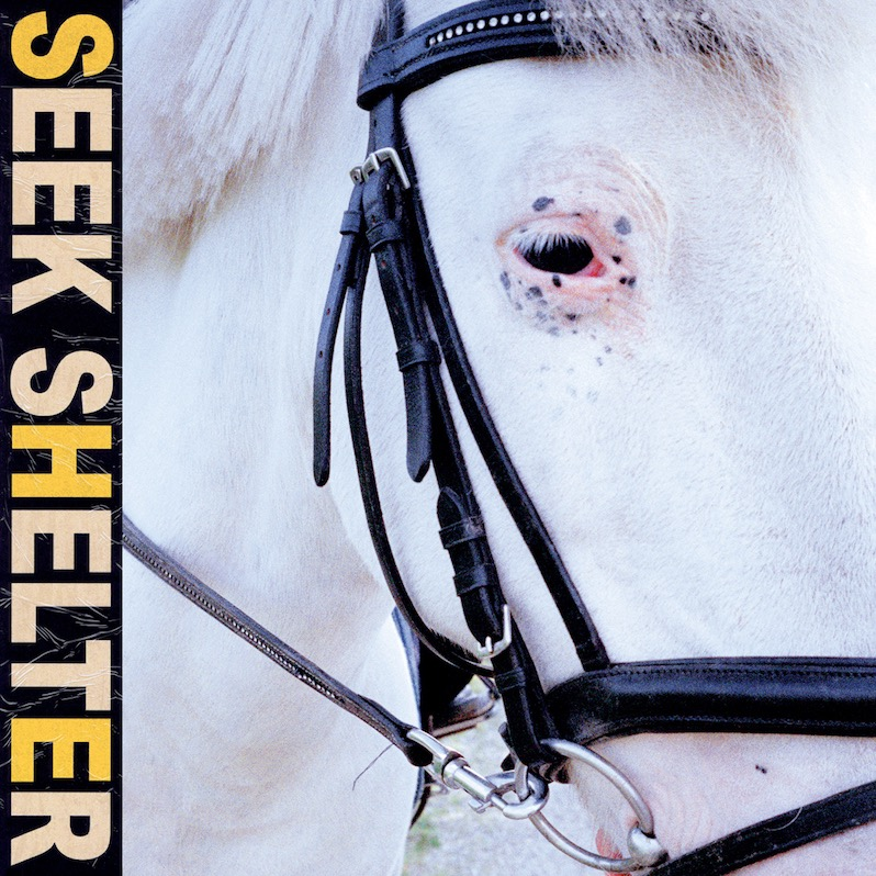 Post-punk shivers – Iceage – Seek Shelter
