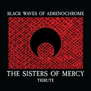 sisters-of-mercy