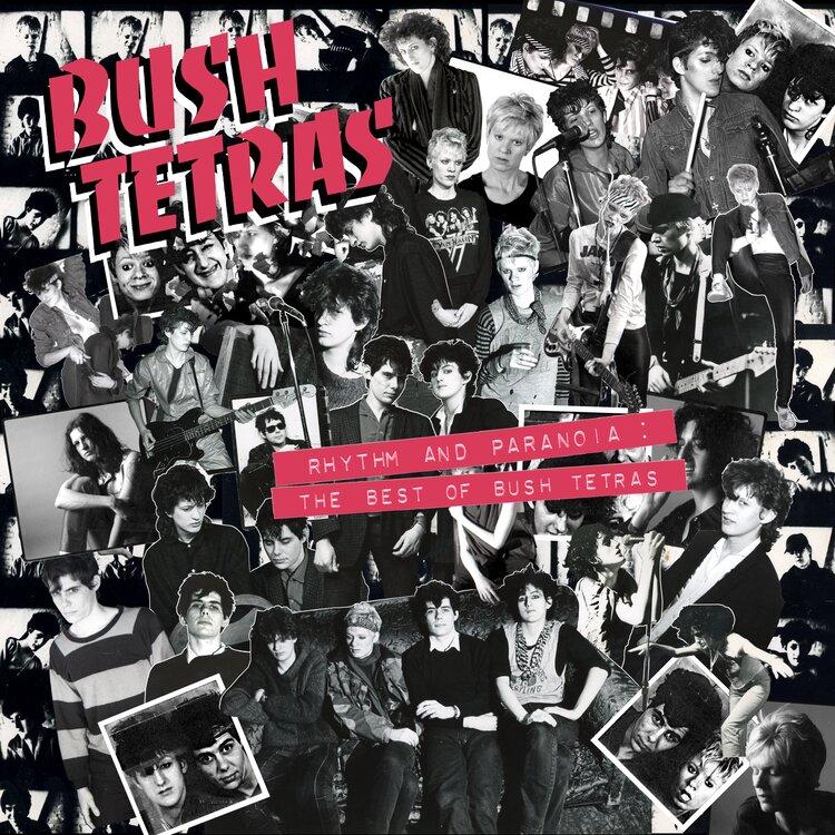 Post-punk shivers – Bush Tetras – Rhythm and Paranoia: The Best of Bush Tetras